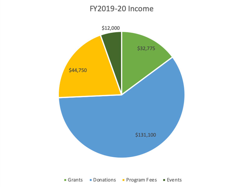 Income FY 2019-2020